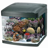 Fish Supplies, Fish Supplies Milwaukee, Fish Supplies at Milwaukee Aquatics